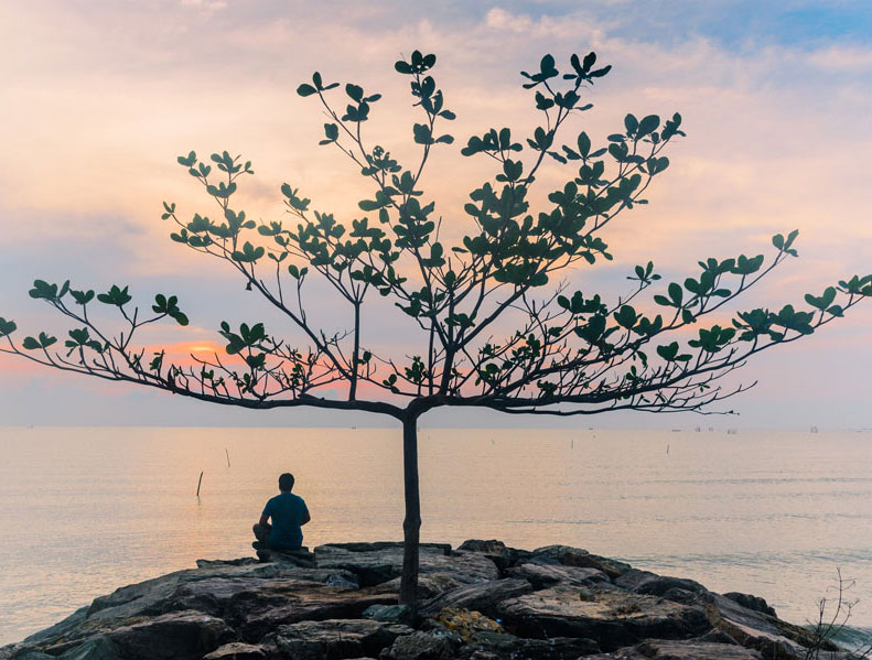 Person sitting in solitude under a tree